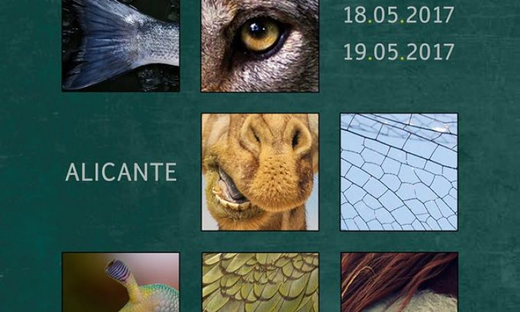 II Congreso de Protección Animal-SECrim,  el 18 y 19 de mayo en Alicante, con tarifa reducida para los/as colegiados/as de Copyscyl