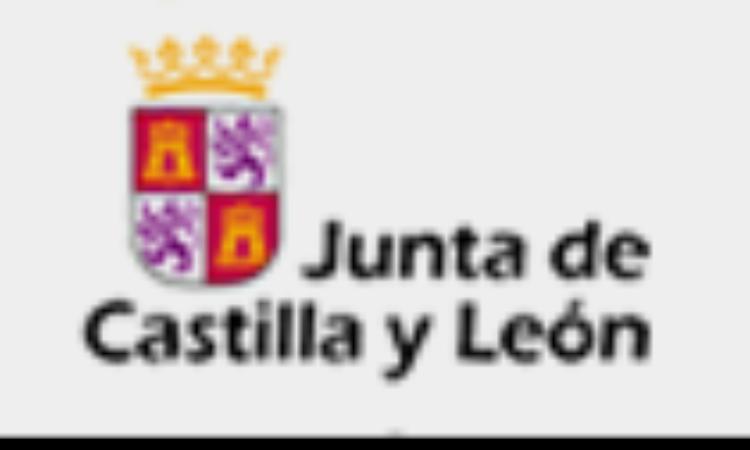 Anteproyecto de  Ley del voluntariado de Castilla y León