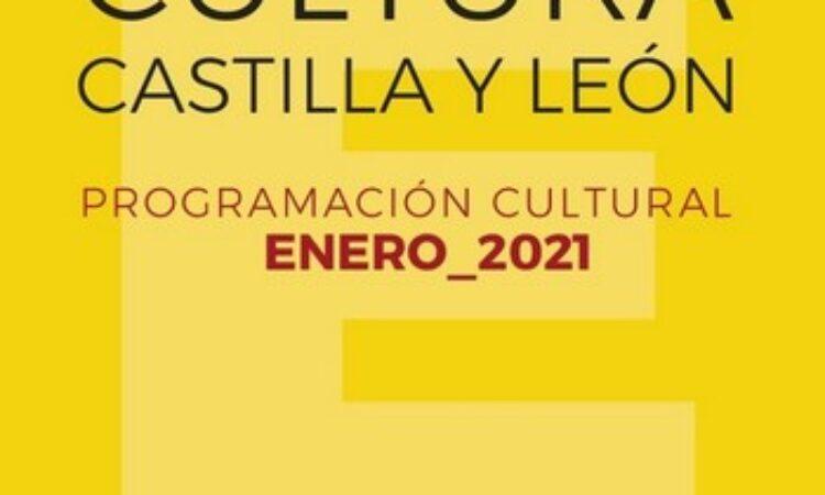 Programa de Actividades Culturales para disfrutar desde casa (Plazo: 30 de enero de 2021)